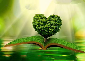 開いた本にハートの樹木